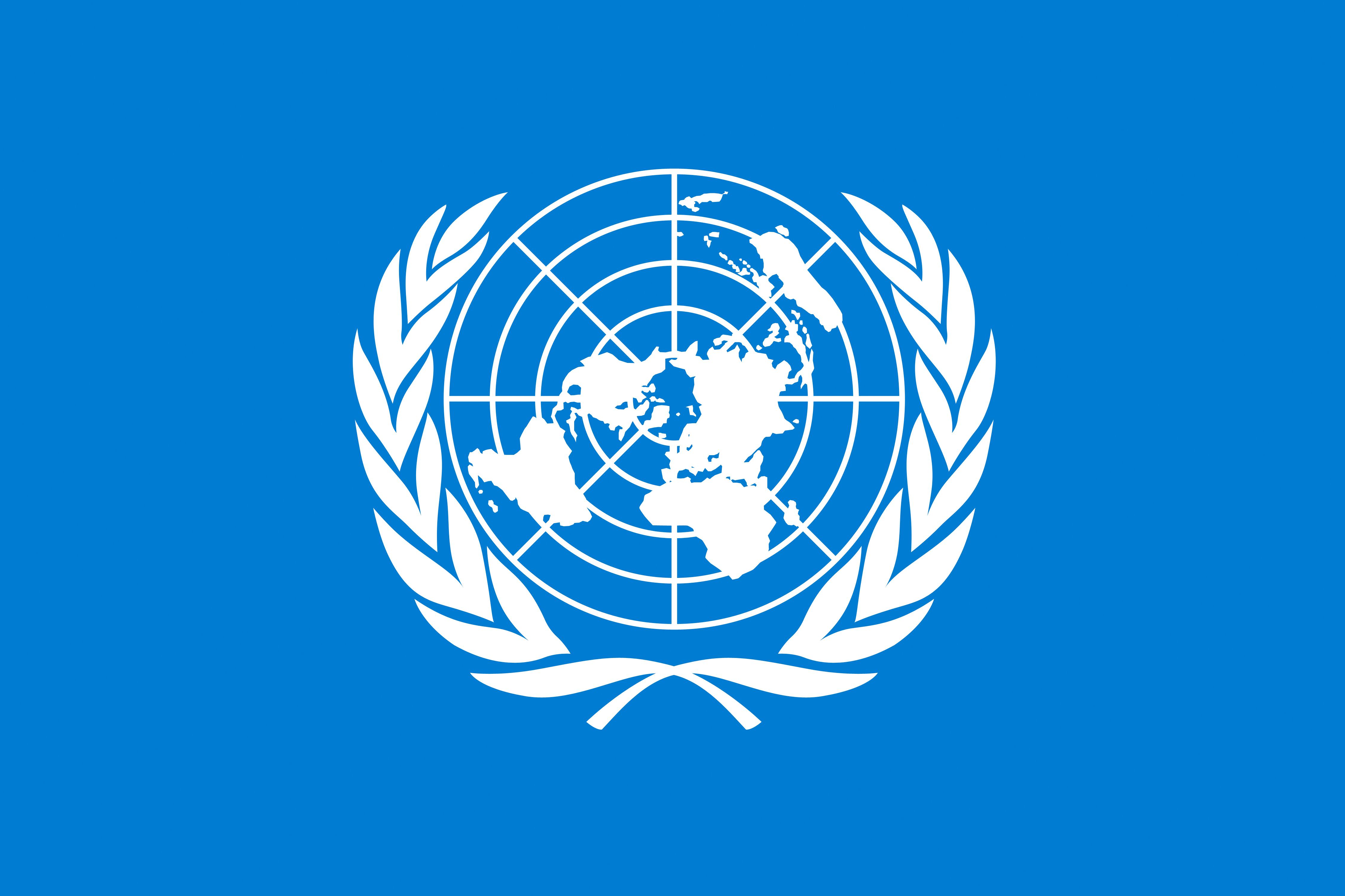Венская конвенция ООН о дорожном движении